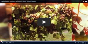 La Belle Amie Vineyard Video